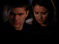 Pacey and Joey - dawsons-creek wallpaper