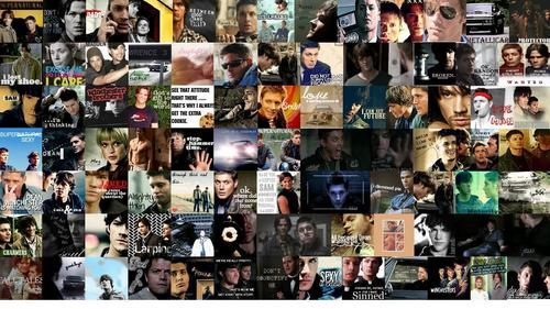 SPN icon wallpaper