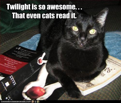 Twilight is so awesome. . . That even Cats read it.