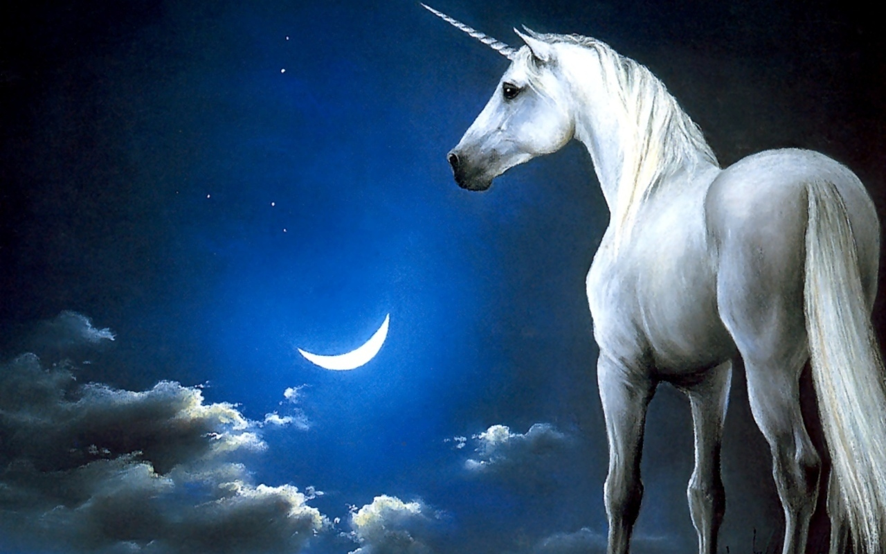 Unicorns Magical Creatures Wallpaper 7841398 Fanpop