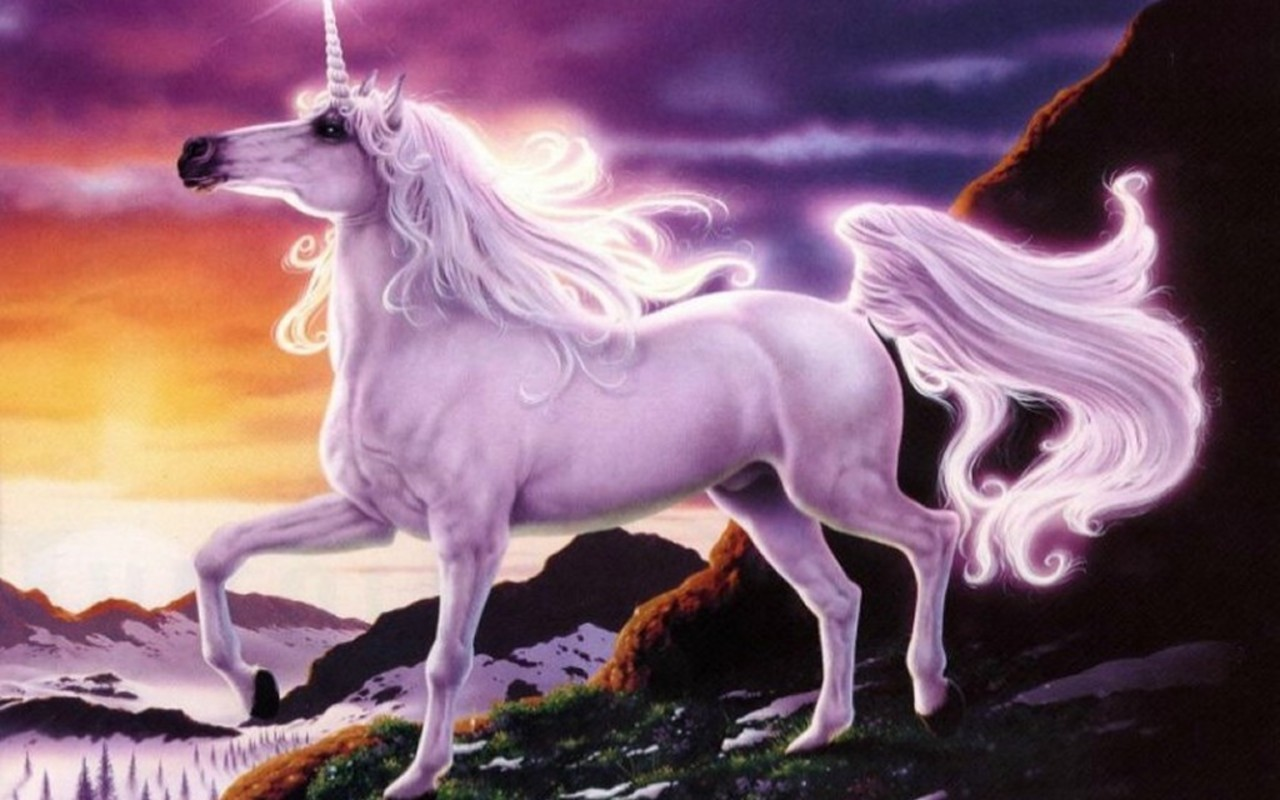Magical Creatures Images Unicorns Hd Wallpaper And