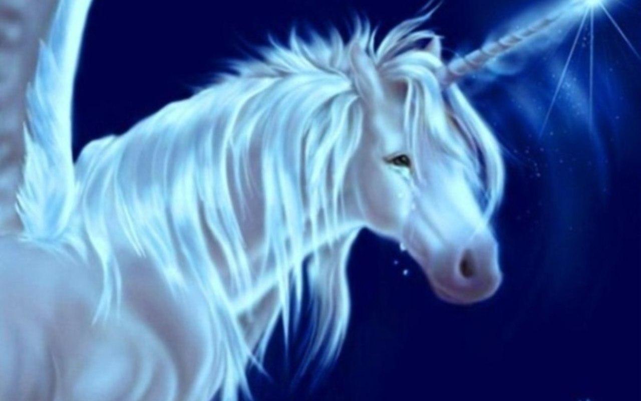 Magical Unicorn Graphic