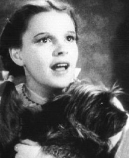 Le Magicien d'Oz fond d'écran entitled Rare photo Of Dorothy And Toto