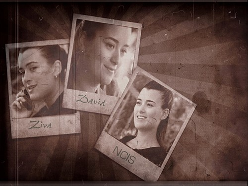 Ziva - ncis Wallpaper