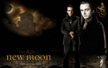 aro volturi - New Moon Wallpaper