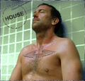 house tattoo - house-md fan art