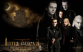 los volturi -  luna nueva wallpaper - twilight-crepusculo wallpaper