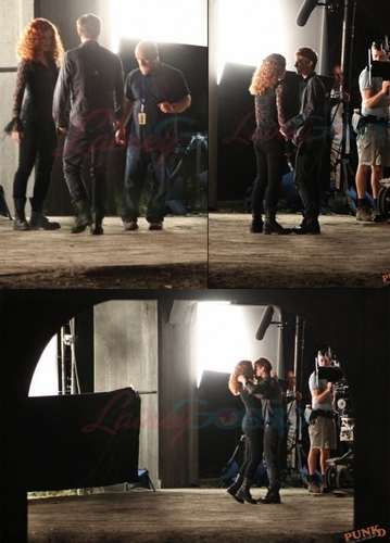 twilight saga 随意 pics