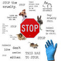Stop Animal Testing,Poster - against-animal-testing fan art