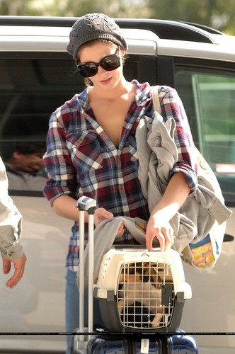 Ashley Greene back in LA with Marlow