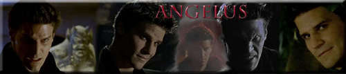 Banner Suggestions: Angelus
