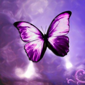 Butterflies wallpaper with a bouquet, a rose, and a camellia entitled Lilac Butterfly
