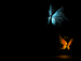 Butterflies In The Dark