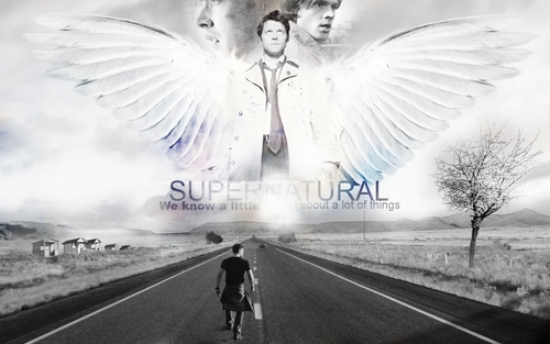 Supernatural wallpaper with a carriageway entitled Castiel & Dean & Sam