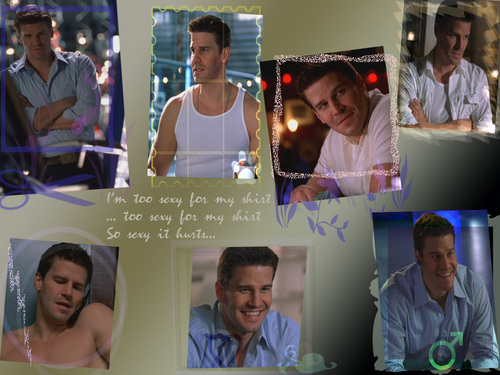 David Boreanaz wallpaper
