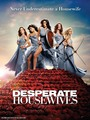 Desperate Housewives Season 6 Promo Poster - desperate-housewives photo