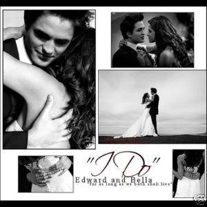 Edward & Bella's Wedding Day!