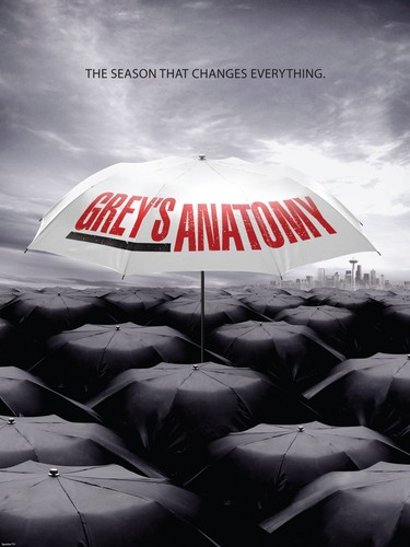Grey's Anatomy wallpaper called Grey's Anatomy Season6 Poster!