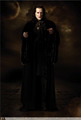 HQ marcus volturi - twilight-series photo