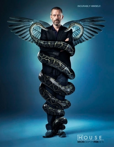 House - Snakes on a cane - hugh-laurie Photo