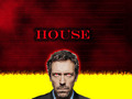House - house-md-fans wallpaper
