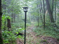 Lantern Waste - the-chronicles-of-narnia photo
