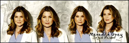 Meredith banner with promo pictures~