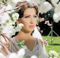 Nancy Ajram  - nancy-ajram photo