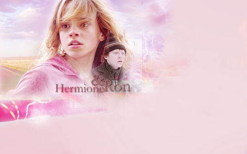 Ron & Hermione mini-banners