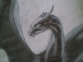 Saphira - inheritance-cycle fan art