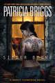 Silver Borne Book Cover