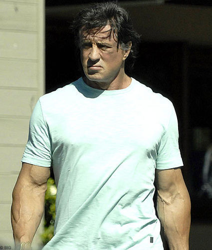 Sylvester Stallone wallpaper probably containing a jersey entitled Sly