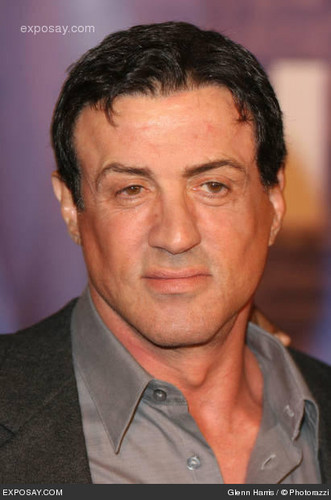 Sylvester Stallone wallpaper possibly with a business suit and a judge advocate called Sly