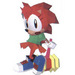 Sonic the Fighters Amy - amy-rose icon