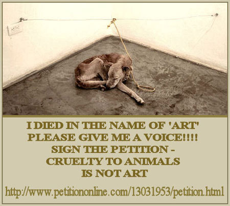 Against Animal Cruelty! wallpaper called Stop Animal Cruelty!!!
