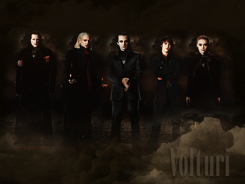 The Volturi پیپر وال containing a کنسرٹ titled The Volturi