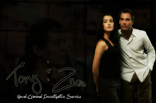 Tiva wallpaper containing a konser entitled Tony & Ziva