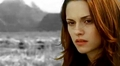 Twilight mini-banners - twilight-series photo