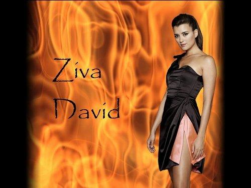 Zivawallpaper