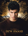 new edward and Jacob posters