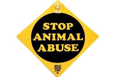 Against Animal Cruelty! wallpaper entitled Stop Animal Cruelty!