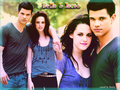 tay and kris* - jacob-and-bella wallpaper