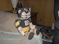 4th. qtr. SB 40 - pittsburgh-steelers photo
