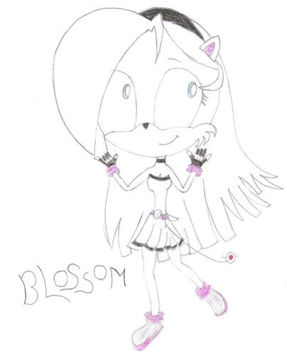 Blossom the Hedgehog