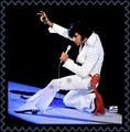 Elvis In Concert - elvis-presley photo