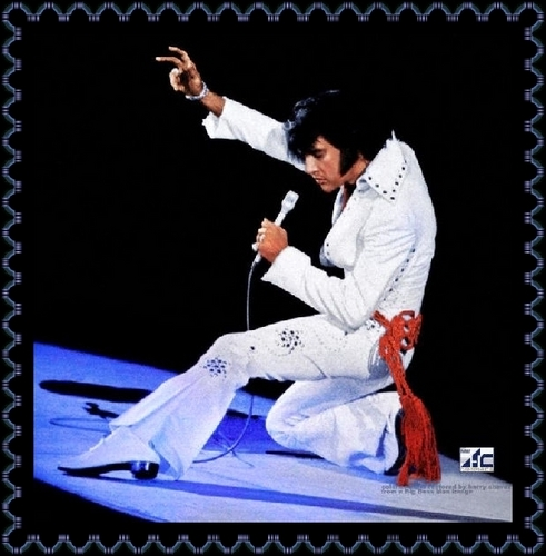 Elvis Presley wallpaper called Elvis In Concert