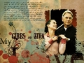 ncis - Gibbs and Ziva wallpaper