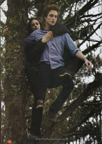 HQ Scans from Фэнтези Film #7 - New Moon Collectors Edition
