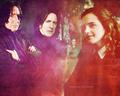 Hermione & Severus - Of Potions & Professors