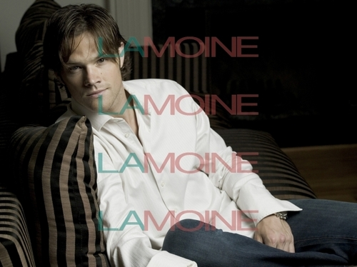 jared padalecki wallpaper called Jared Padalecki